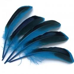 Piórka dekoracyjne  115~160x20~35mm Niebieski mix