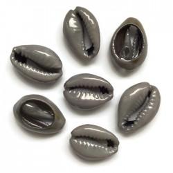 Muszelki kauri naturalne - 15~17x10~11x5~6mm - kolor szary