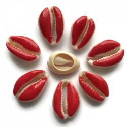 Muszelki kauri naturalne - 20~26x13~18x5~7mm - czerwony