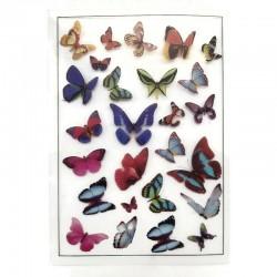 Obrazki plastikowe do zatopienia w żywicy, motyle 10,5x15cm